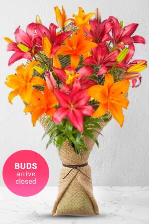 Lorraine from United Kingdom sent Glowing Lilies to Allen in Australia