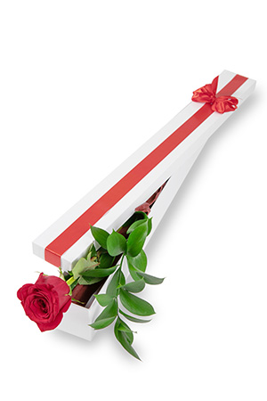 Shelli from United States sent Long Stem Single Rose Presentation Box to Kathleen in United States