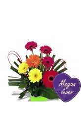 Megan Loves Paradise