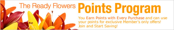 Points Program